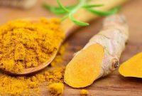 Khasiat Temulawak untuk Resep Herbal Kanker Hati
